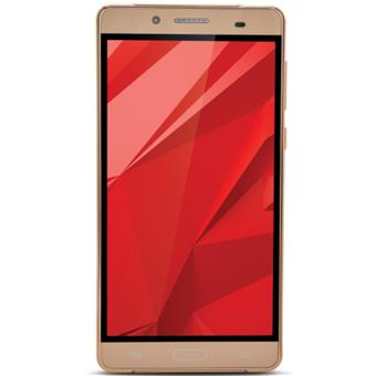 buy IBALL MOBILE ANDI 5.5H WEBER SPECIAL GOLD :IBall